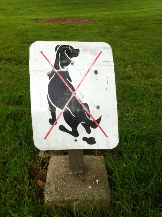 No Dogs or Chicken Drumsticks